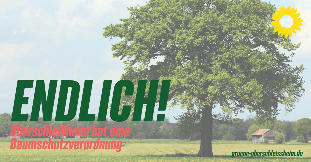 Oberschleißheim hat eine Baumschutzverordnung